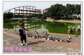 新莊運動公園:IMG_6178.JPG