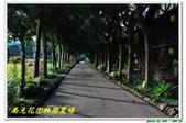 南元花園休閒農場:IMG_9591.JPG