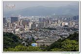 201905虎山步道復興園:_MG_1562.jpg