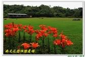 南元花園休閒農場:IMG_9671.JPG