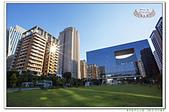 201909臺中新市政公園:_MG_7584.jpg