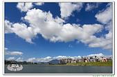 201908大台北都會公園:_MG_6579.jpg