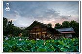 埔里紙教堂10705:_MG_7298.jpg