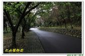 仁山植物園:IMG_0017.jpg