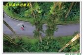 溪頭森林遊樂區:IMG_0485.JPG