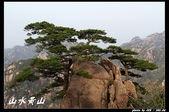 山水黃山-2:IMG_4488.jpg
