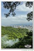 201905虎山步道復興園:_MG_2323.jpg