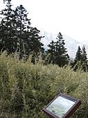 2009玉山雪山之雪:IMG_0048