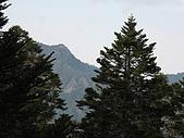 2009玉山雪山之雪:IMG_0043