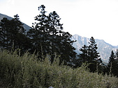 2009玉山雪山之雪:IMG_0044