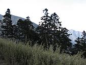 2009玉山雪山之雪:IMG_0047