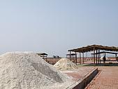 990327~28台南二日遊:鹽堆