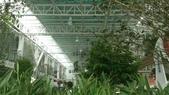 1010809宜蘭員山香草菲菲下午茶:很大的溫室花房~不怕風雨