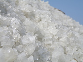 990327~28台南二日遊:美麗的鹽晶