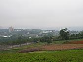 990409大溪10新竹:看的挺遠的