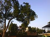 971207新竹峨眉湖二泉湖畔:樹後面是間~美麗的別墅
