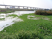 991109芭小附近的水塘戶外教學:捷運通過青塘園