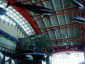 20070602~04墾丁山海戀:海生館內