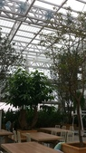 1010809宜蘭員山香草菲菲下午茶:玻璃屋頂,因為怕會陽光直射,還有灑水裝置