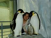 20070602~04墾丁山海戀:企鵝家族