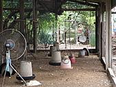 990909蘆竹張家土雞城&野上麵包:空蕩蕩的養雞場