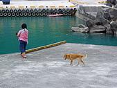 960615~17花蓮之旅:我家的老媽&老狗&洪寶寶~漁港的水清澈見底