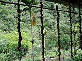 960615~17花蓮之旅:原住民路邊攤的裝飾