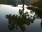 971207新竹峨眉湖二泉湖畔:樹的倒影