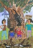 2013-我最喜歡的樹-低年級組獲獎作品:優選_許碩晏_台北市華興小學_我最喜歡的樹~青剛櫟樹,甲蟲的故鄉.JPG