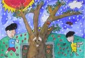 2013-我最喜歡的樹-低年級組獲獎作品:入選_陳立堯_苗栗縣蟠桃國小_學校裡的印度紫檀.JPG