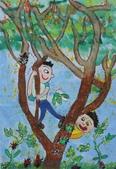 2013-我最喜歡的樹-低年級組獲獎作品:優選_紀佐燁_台中市龍津國小_生態豐富的台灣欒樹.JPG