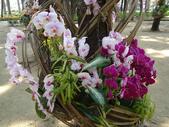 2012-02-29 2012台南百花祭:2012-02-29 2012台南百花祭 018.JPG