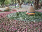 2013-02-07台南百花祭(台南公園):台南百花祭 057.JPG