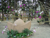 2013-02-07台南百花祭(台南公園):台南百花祭 013.JPG