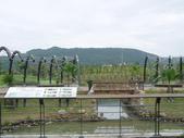 2012-07-25高雄 中都濕地公園:2012-07-25高雄 中都濕地公園 006.JPG