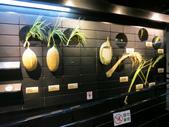 2013-02-10台南 新市 樹谷科學生活館:樹谷科學生活館 021.JPG