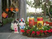 2013-02-07台南百花祭(台南公園):台南百花祭 014.JPG