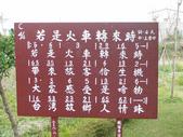 2012-02-26嘉義 新港 板頭社區:2012-02-26板頭社區 017.JPG