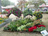 2013-02-07台南百花祭(台南公園):台南百花祭 078.JPG