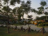 2013-10-26台南 仁德 都會公園:2013-10-26台南都會公園 009.JPG