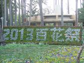 2013-02-07台南百花祭(台南公園):台南百花祭 015.JPG