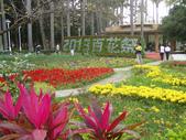2013-02-07台南百花祭(台南公園):台南百花祭 016.JPG