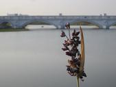 2013-10-26台南 仁德 都會公園:2013-10-26台南都會公園 032.JPG