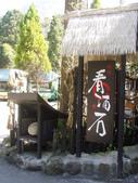2012-03-05溪頭 松林町妖怪村:2012-03-05松林町妖怪村 004.JPG