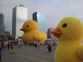 2013-10-02高雄 光榮碼頭(黃色小鴨):2013-10-02高雄 黃色小鴨 015.JPG