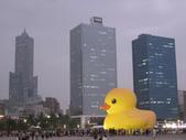 2013-10-02高雄 光榮碼頭(黃色小鴨):2013-10-02高雄 黃色小鴨 002.JPG