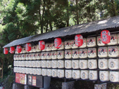 2012-03-05溪頭 松林町妖怪村:2012-03-05松林町妖怪村 005.JPG