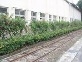 2012-02-26阿里山鐵道北門驛:2012-02-26阿里山鐵道北門驛 116.JPG