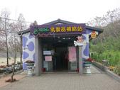 2013-02-05嘉義 獨角仙農場:獨角仙農場 005.JPG
