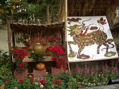 2013-02-07台南百花祭(台南公園):台南百花祭 007.JPG